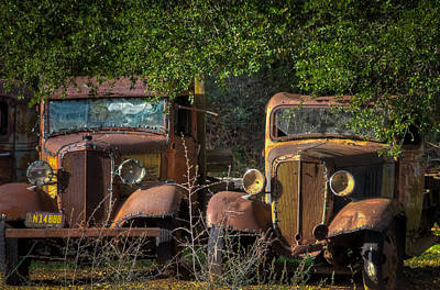Photograph - Vintage Old Trucks by Connie Cooper-Edwards
