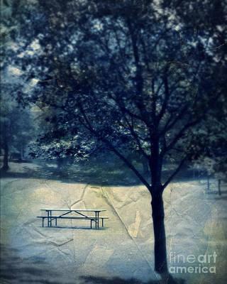 Webster Park Photograph - Vintage Park by Perry Webster