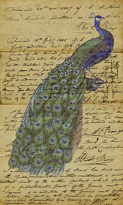 Jules Mixed Media - Vintage Peacock by Marcus  Jules
