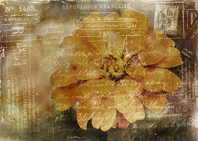Mixed Media - Vintage Post Card by Trudy Wilkerson