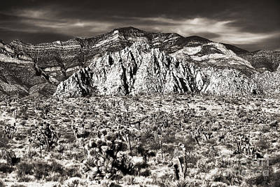 Photograph - Vintage Red Rock by John Rizzuto