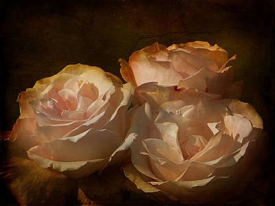 Vintage Rose Art Print by Blair Wainman