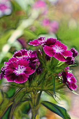 Violet Floral Imressions Art Print by Bill Tiepelman