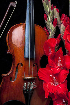 Violin Photograph - Violin And Gladiolus by Garry Gay