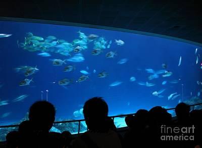 Visitors At Ocean Aquarium Art Print by Yali Shi