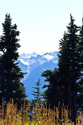 Landscape Photograph - Vistas Along The Trail by Marie Jamieson