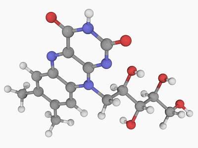 Metabolism Digital Art - Vitamin B2 (riboflavin) Molecule by Laguna Design