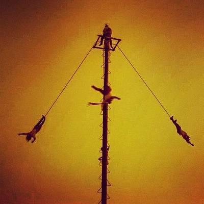 Finch Wall Art - Photograph - Voladores De Papantla by Roberto Rubio