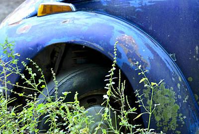 Photograph - Volkswagen Graveyard - 1 by Carolyn Marshall