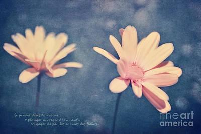 Photograph - Voyager De Par Les Aromes Des Fleurs by Aimelle