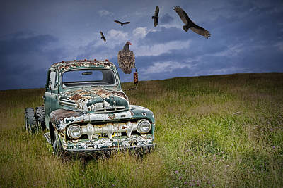 Condor Photograph - Vultures And The Abandoned Truck by Randall Nyhof