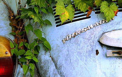 Photograph - Vw Bug With Vines by Nancy Greenland