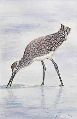 Painting - Wading Willet by Jeanne Kay Juhos