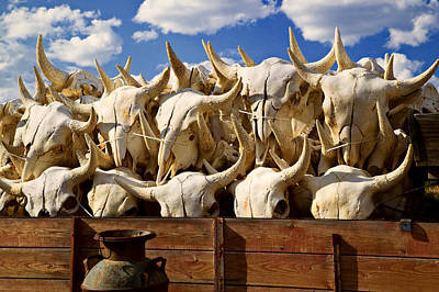 Bison Photograph - Wagon Full Of Animal Skulls by Garry Gay