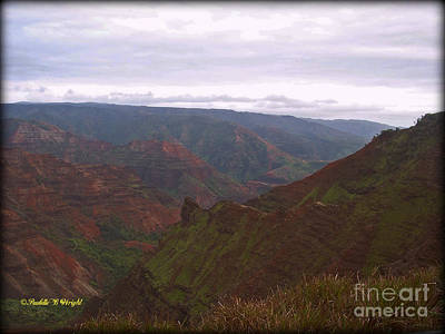 Landscape Photograph - Waimea Canyon View by Paulette B Wright
