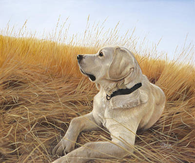 Painting - Waiting For The Birds by Tammy  Taylor