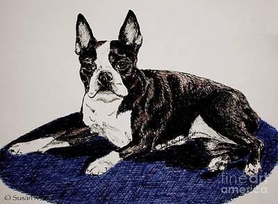 Brindle Drawing - Wake Up by Susan Herber