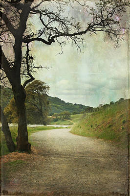 Livermore Photograph - Walk Of Life by Laurie Search