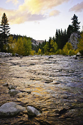 Photograph - Walker River by Sherri Meyer