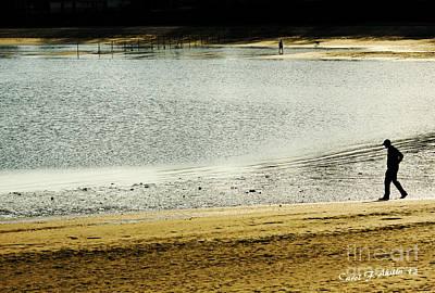 Dog In Landscape Digital Art - Walking On The Beach by Carol F Austin