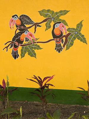 Photograph - Wall Art  Costa Rica by Joe  Palermo