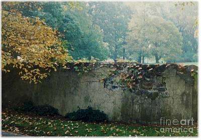 Wall In Fall Art Print by Maxine Bochnia