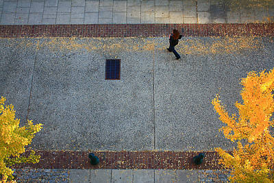Photograph - Wall Street Looking Down by Gray  Artus