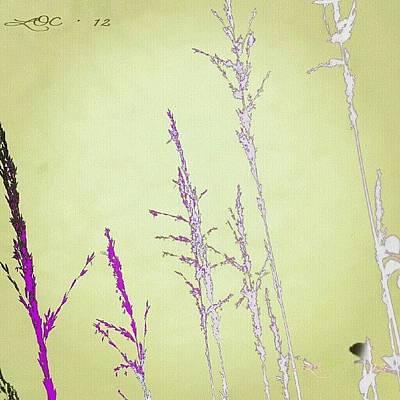 Wallpaper Wall Art - Photograph - Wallpaper Options #soft_tones by Lotte Corvinius