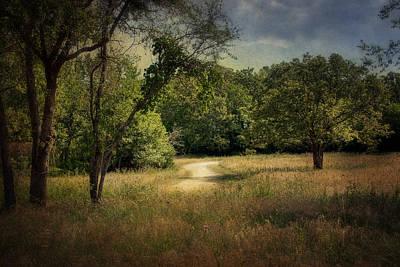 Wandering Path I Art Print by Tamyra Ayles