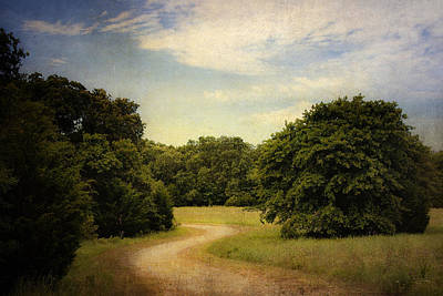 Photograph - Wandering Path II by Tamyra Ayles