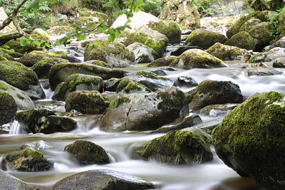Aira Force Wall Art - Photograph - Wandering Wondering by Victoria  Careford-White