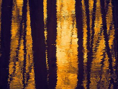 Photograph - Warm Reflection On A Cold Day by Beth Akerman