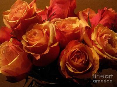 Photograph - Warm Roses by Robert D McBain