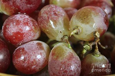 Photograph - Washed Grapes by Terri Thompson