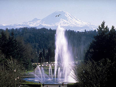 Photograph - Washington Fountain To The Mountain by University of Washington