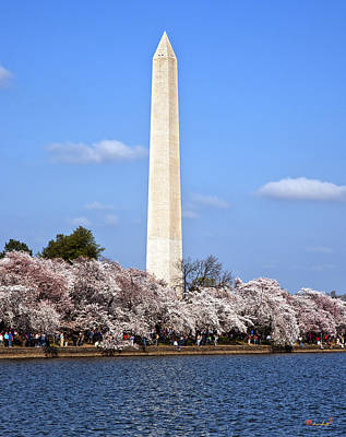 Photograph - Washington Monument From The Tidal Basin Ds055 by Gerry Gantt