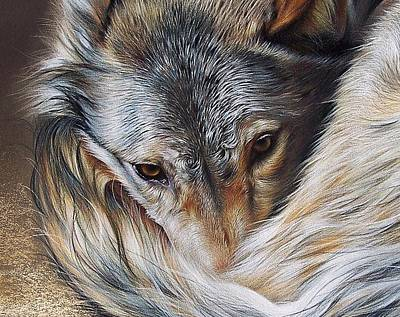 Watchful Rest -close-up Detail Art Print by Elena Kolotusha