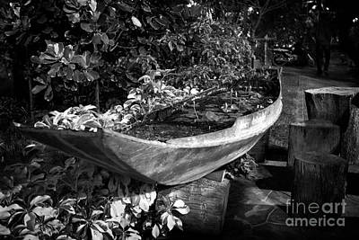 Art Print featuring the photograph Water Canoe by Thanh Tran