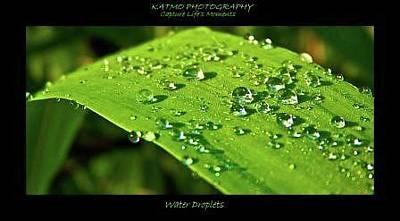 Photograph - Water Droplets by Katlego Mokubyane