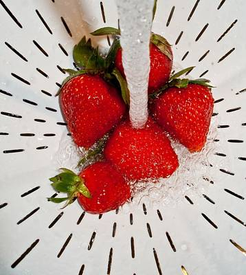 Art Print featuring the photograph Water For Strawberries by David Pantuso