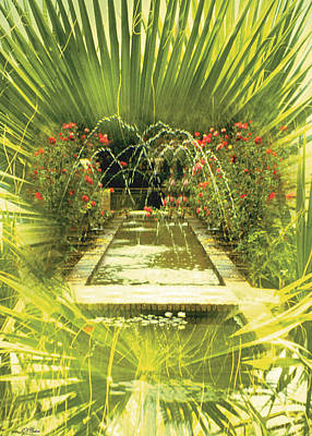 Limited Edition Photograph - Water Garden Card by John Neville Cohen