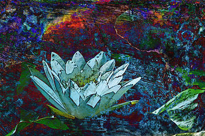 Water Lily Abstract Art Print by Phyllis Denton