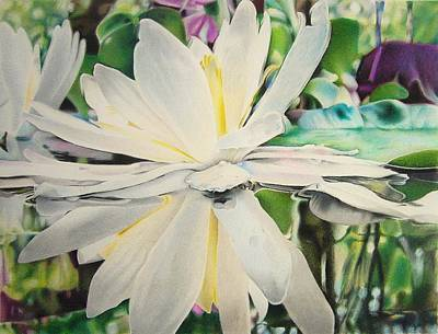 Lilly Pond Drawing - Water Lily by Eric Pouillet