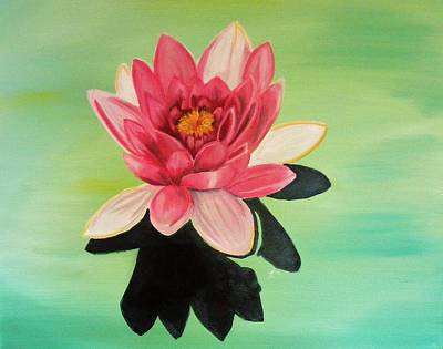 Water Lily Art Print by Laura Evans