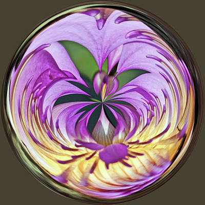 Water Lily Orb Art Print