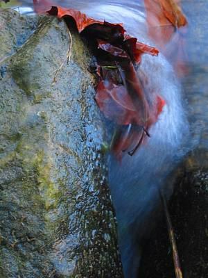 Water Maiden Art Print by Lynn Dodds