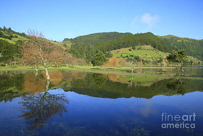 Flooding Photograph - Water Mirror by Gaspar Avila