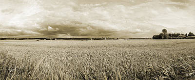 Photograph - Water Over Wheat by Jan W Faul