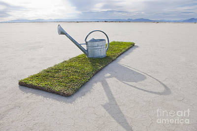 Water Pail On Strip Of Grass Print by Thom Gourley/Flatbread Images, LLC