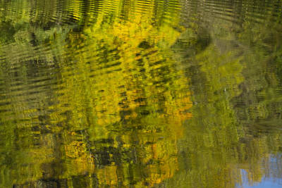 Farm Life Paintings Rob Moline - Water Reflection Abstract Autumn 1 D by John Brueske